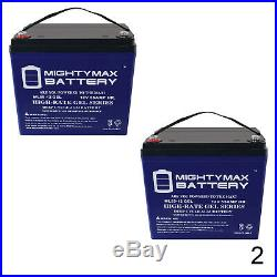 Mighty Max 12V 55AH GEL Battery for Active Care Wildcat 450 Power Chair 2 Pack